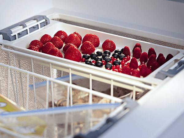 <strong>Invriesplateau.</strong> Kleine vruchten en kruiden kunnen los van elkaar invriezen waarna portioneren en verpakken eenvoudig gaat. Het plateau is ook te gebruiken als dooiwater opvangschaal.